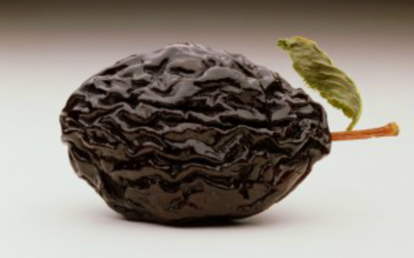 prune-fruit-600.jpg