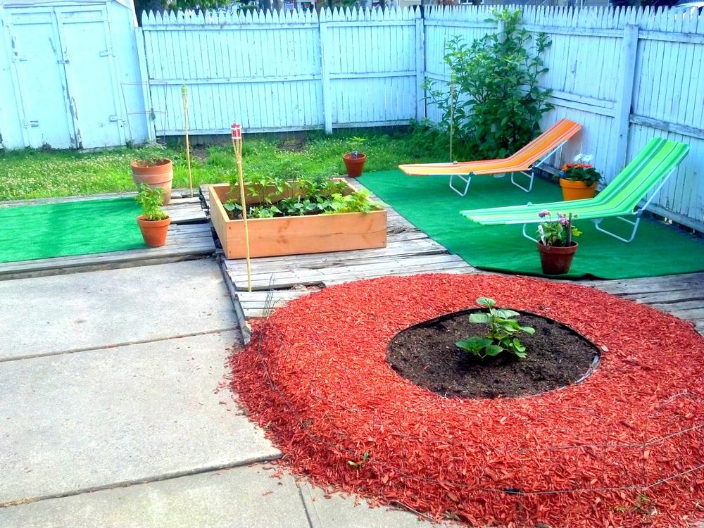 Garden Oasis.jpg