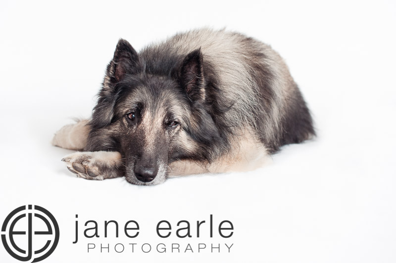 janeearlephotography--5.jpg