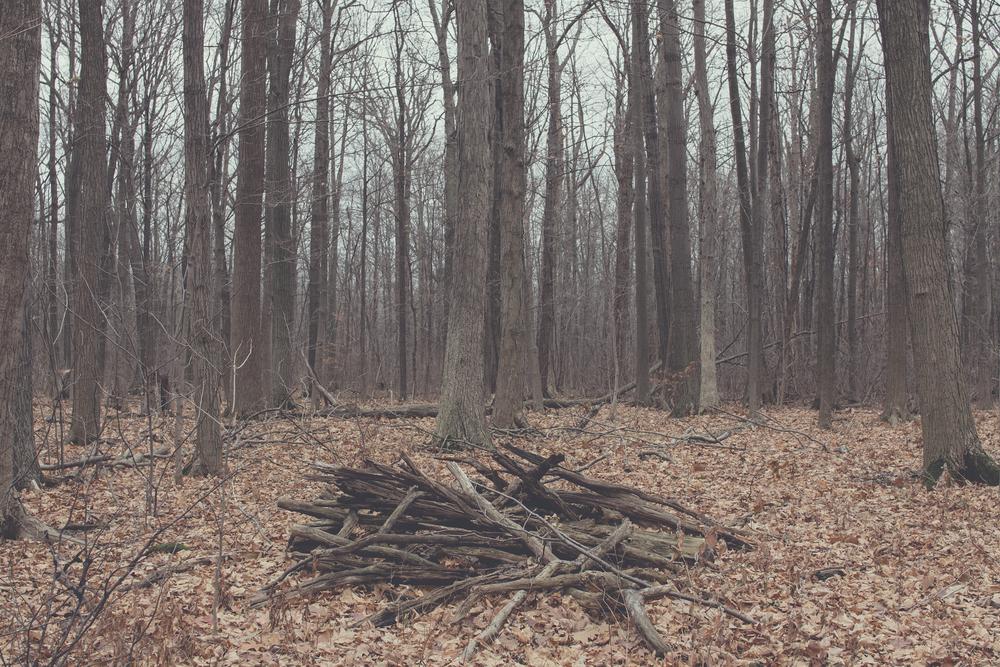 scarf layers forest via Rebecca-Jacobs.com-10.jpg