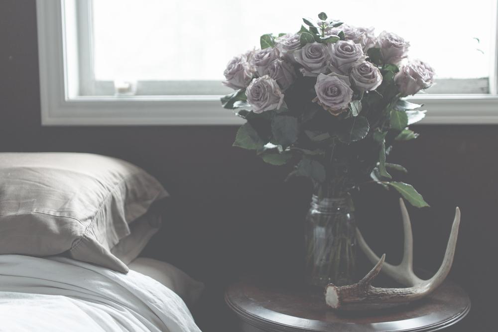 lilac roses via Rebecca-Jacobs.com-1.jpg