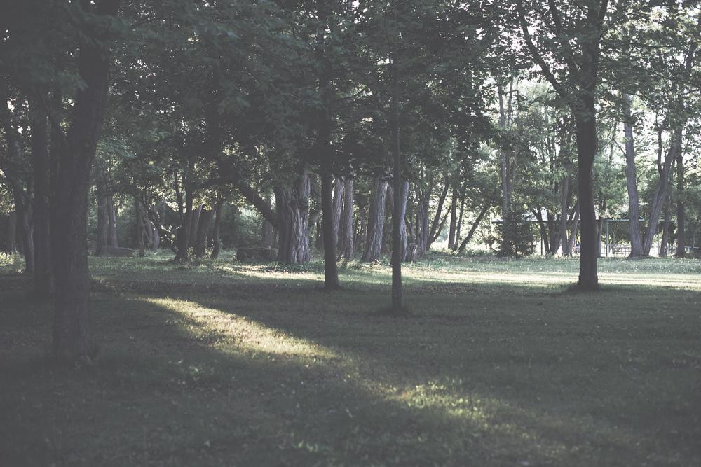 photography style via Rebecca-Jacobs.com-14.jpg