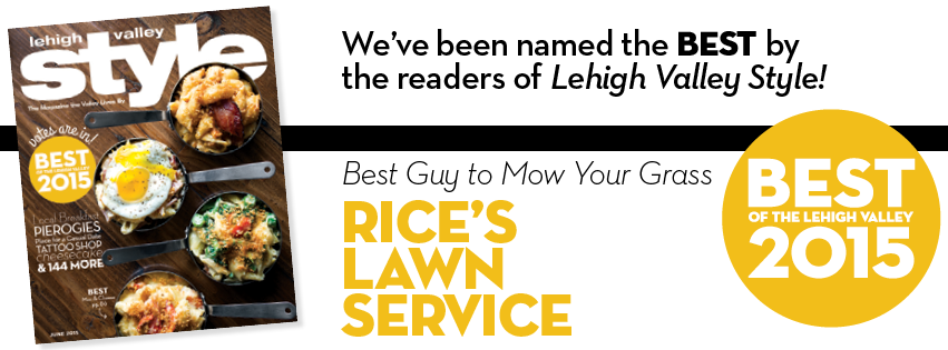 BOLV Rice's LAwn Service.png