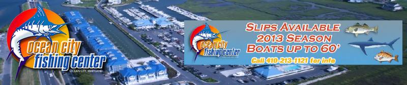 Full service marinas slips 2016 huk big fish classic for Ocean city fishing center