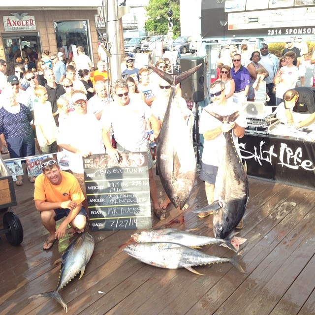 225.0 LB BIG EYE TUNA TO  M.R. DUCKS - $5,496