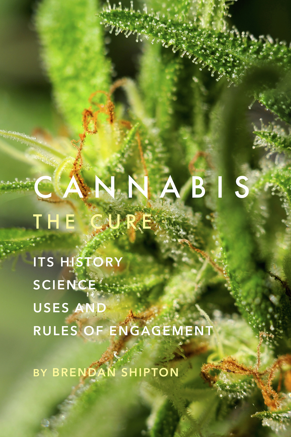Cannabis -The Cure - FrontCover - Final Art.jpg