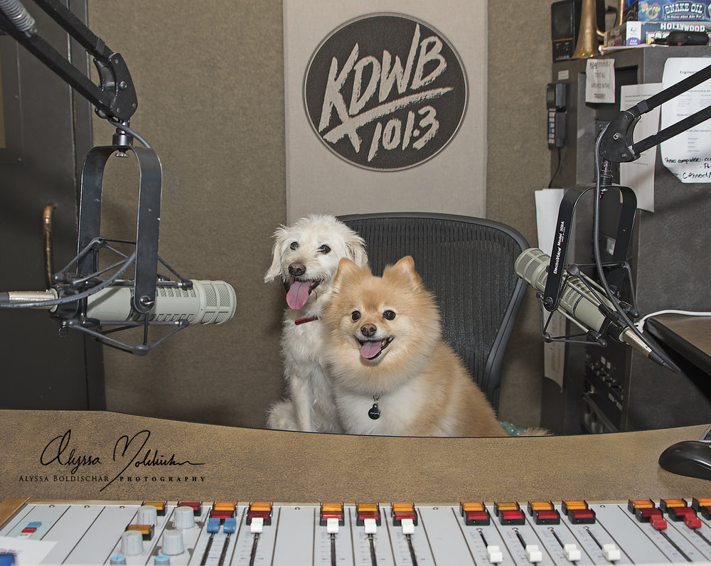 KDWB-Josie & Elliott  -  Alyssa Boldischar-with Logo.jpg