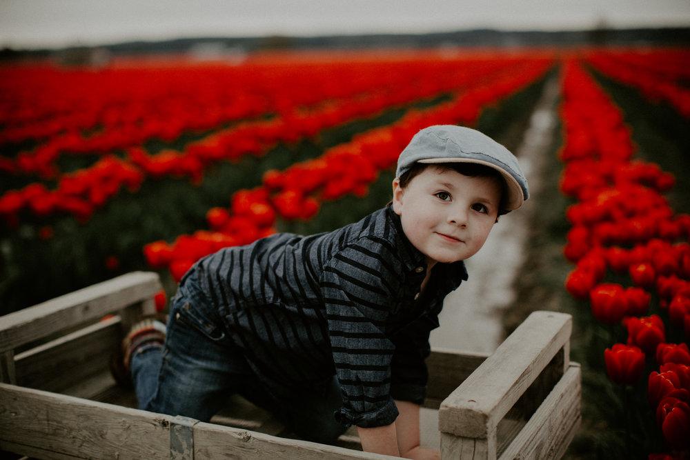 Modern Tulip - Portrait Sessions