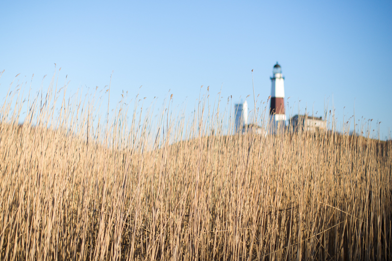 Montauk_Engagement_012.jpg