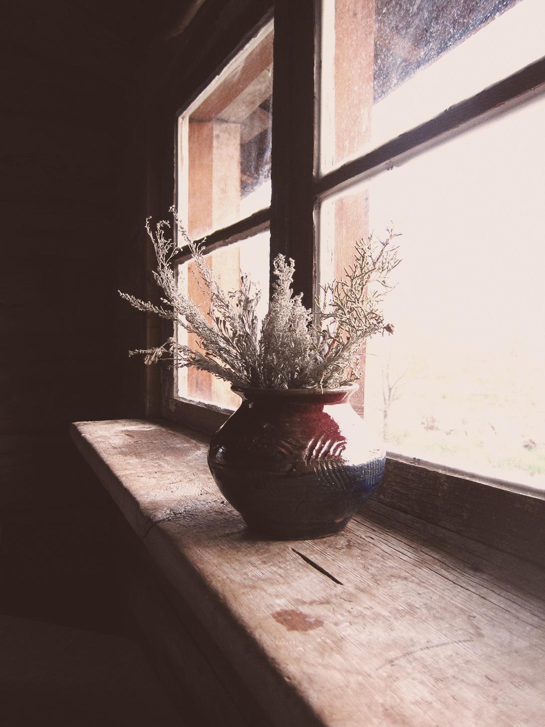 log-cabin-window