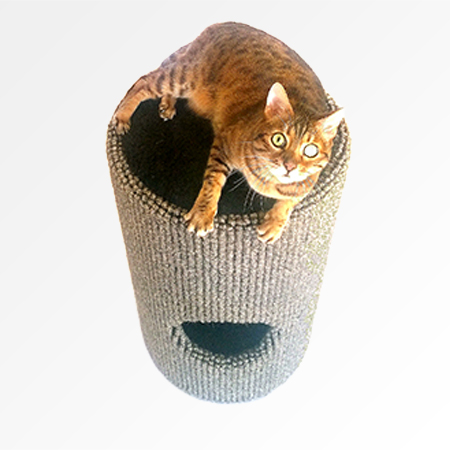 700mm high Bobcat with toy compartment in Wool carpet