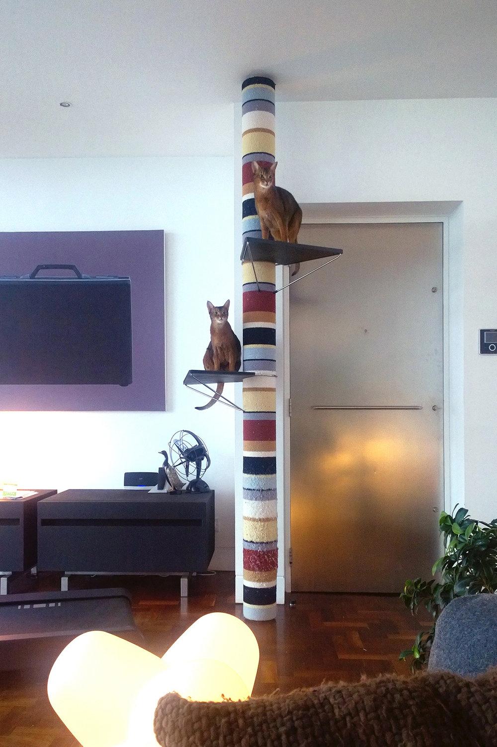 Bespoke Wool Polecat & Cat's Cradles
