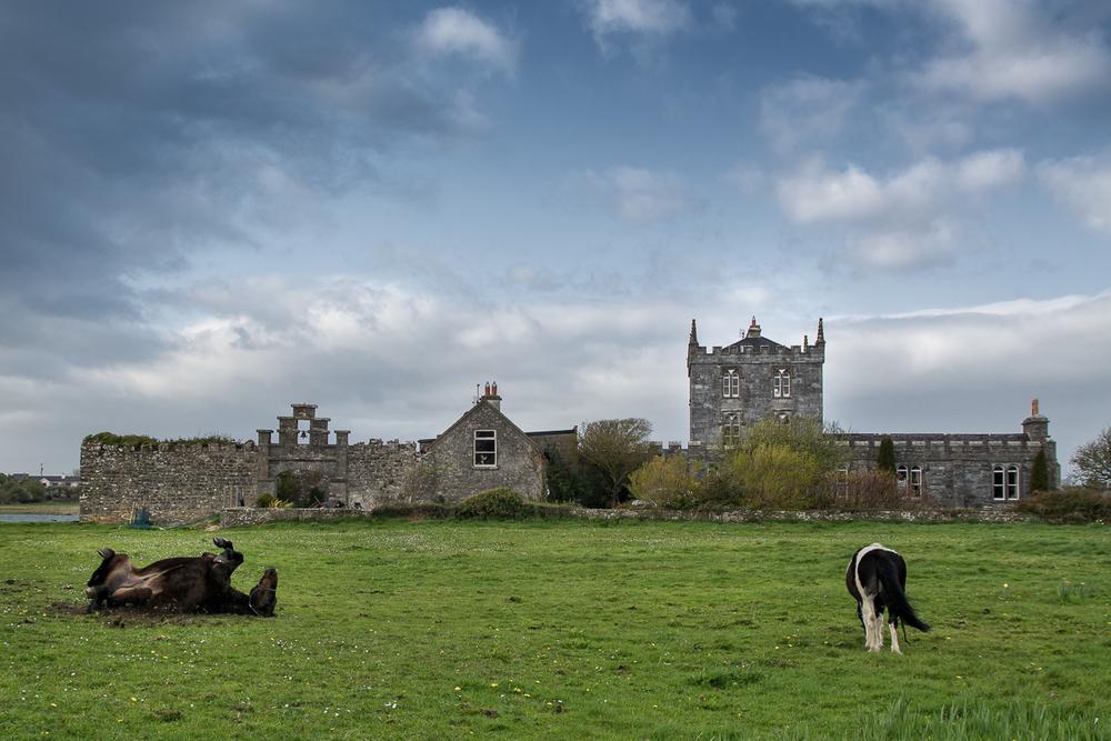 Kilcolgan castle