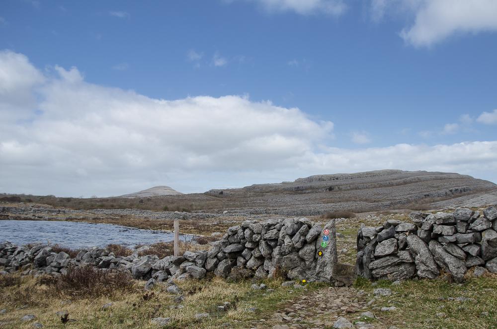 The actual walk starts near the Turlough