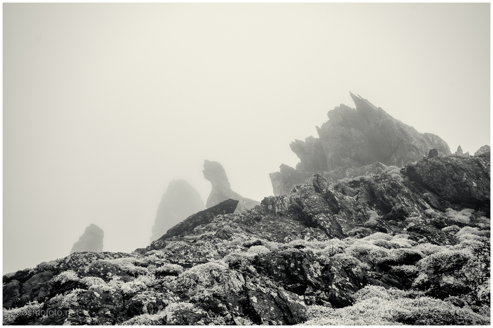 Rock structures in the fog