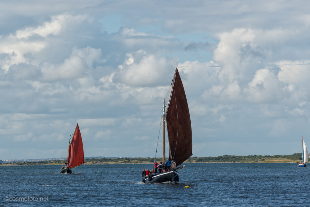 Most of the boats are based in Connemara. Saturday sees the arrival of the boats in Kinvara.