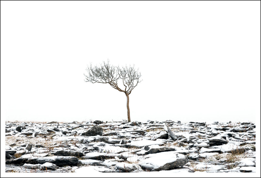 Burren Winter 17 (2).jpg