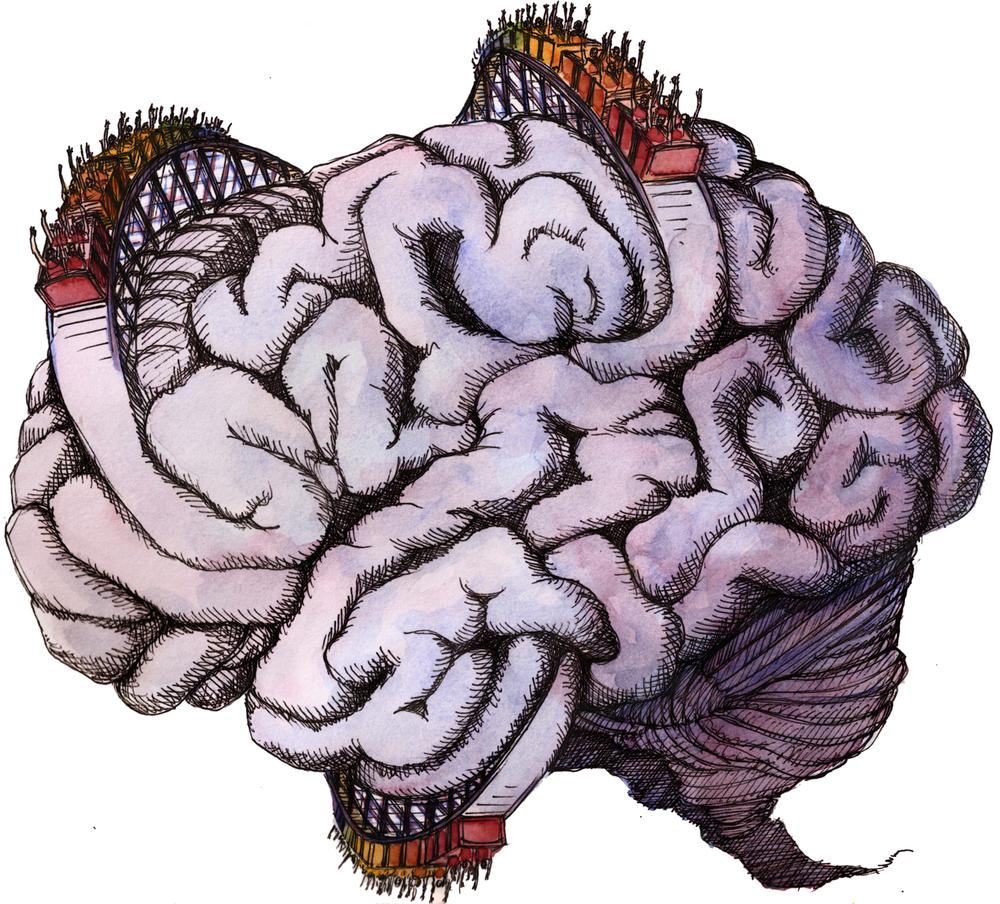 brain coaster1.jpg