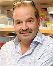 Randolph J Noelle, Ph.D.  Geisel School of Medicine at Dartmouth  VISTA: a novel checkpoint regulator of innate and adaptive immunity