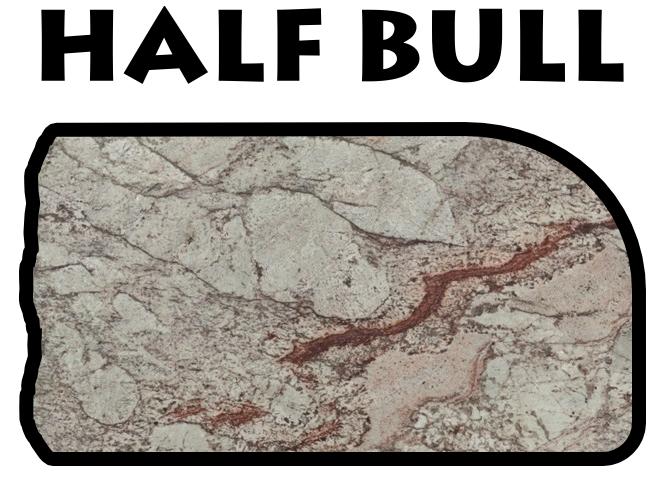half bull.png