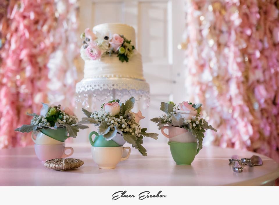 Elmer Escobar, from Amanda + Brad's sweet, intimate pink wedding
