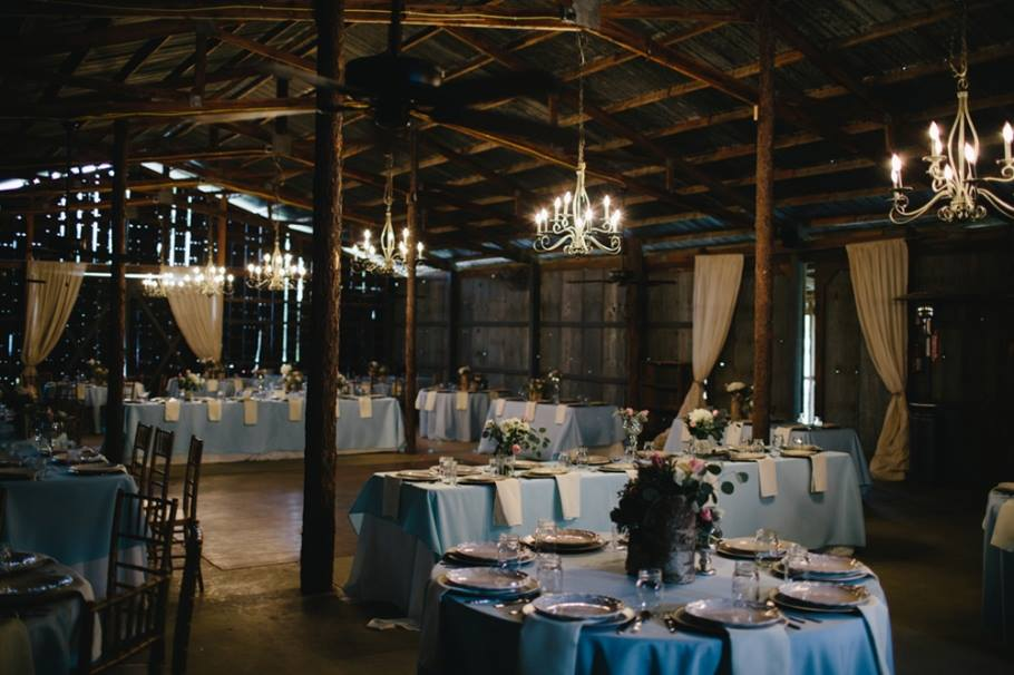 Cottonwood Studios Worldwide , from  Ally + Tyler' s beautiful blue and pink wedding