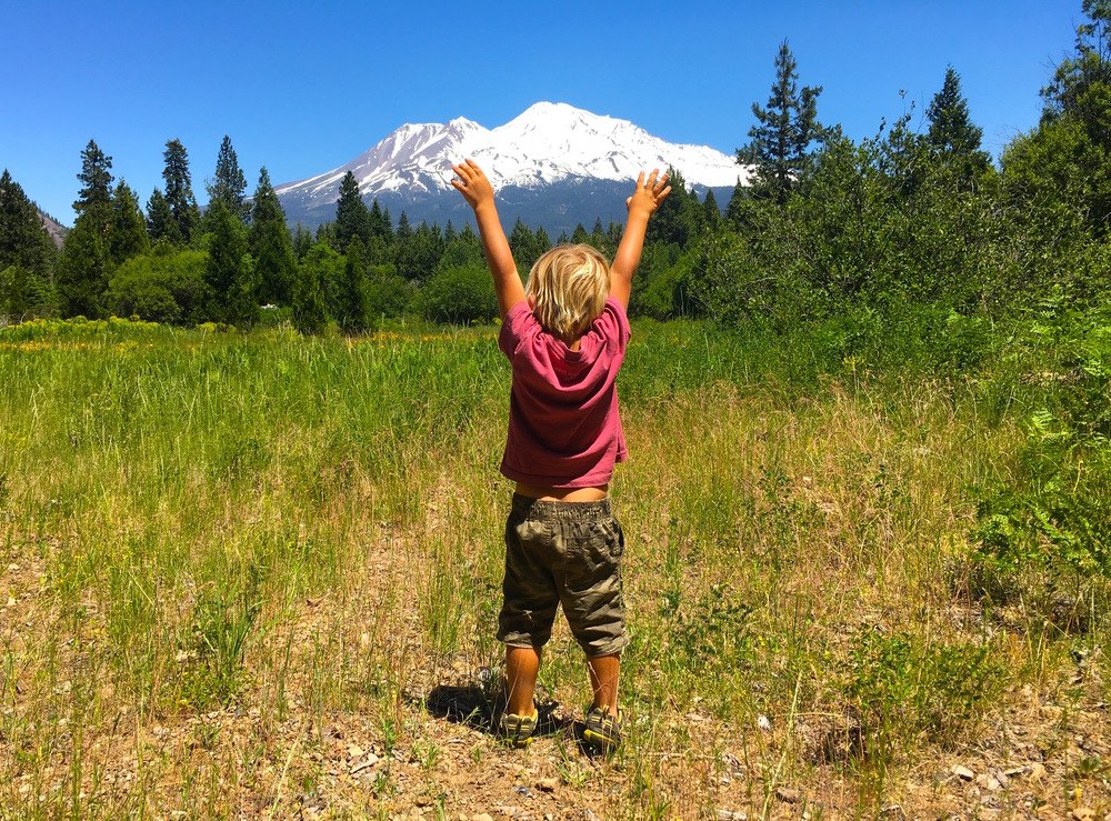 Raphael with Mount Shasta