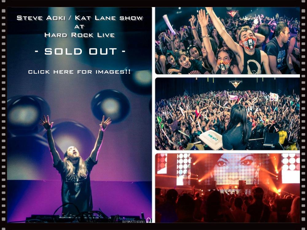 Sold Out Aoki Kat Lane show collage.jpg