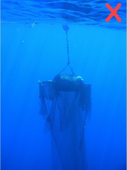 Don't use underwater panels of loose, large-mesh netting; they pose an entanglement hazard.