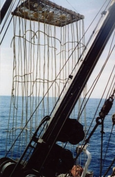 Capt. Dick Stephenson's FAD design using ropes to replace net
