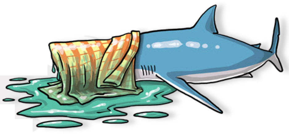 A cool, wet cloth lightly draped over its head can calm an energetic shark. (Poisson et al, 2012)