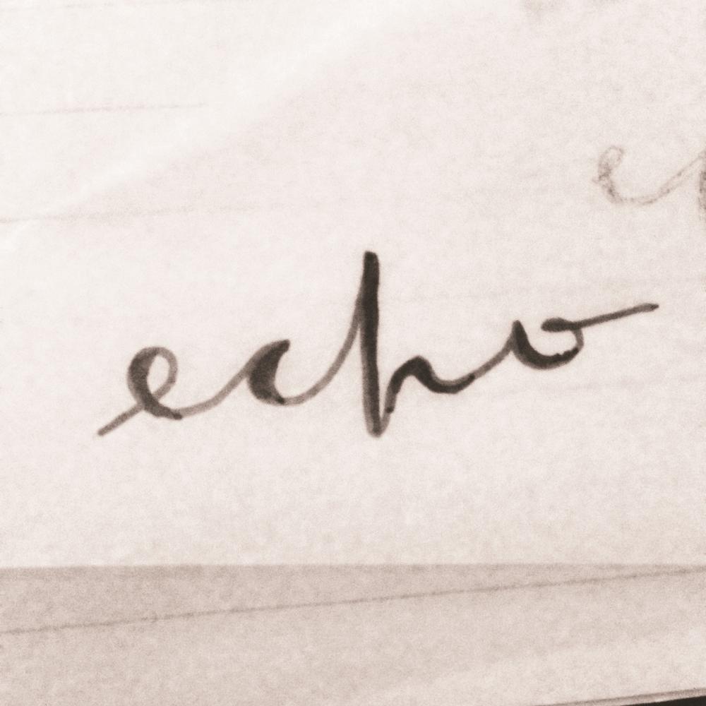 echo18.JPG