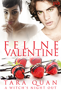 1NIGHT STAND   INTERRACIAL/MULTICULTURAL   ON Valentine's Day,   A sweet tooth witch lands a shifter chef in this foodie Paranormal Romance.   Learn More.