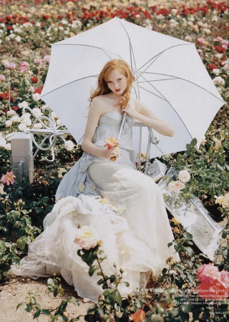 umbrella-785x1106