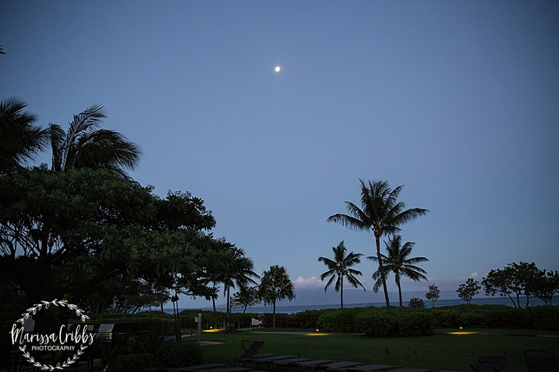 Hawaii Photography | Maui Photography | Destination | Marissa Cribbs Photography_3189.jpg