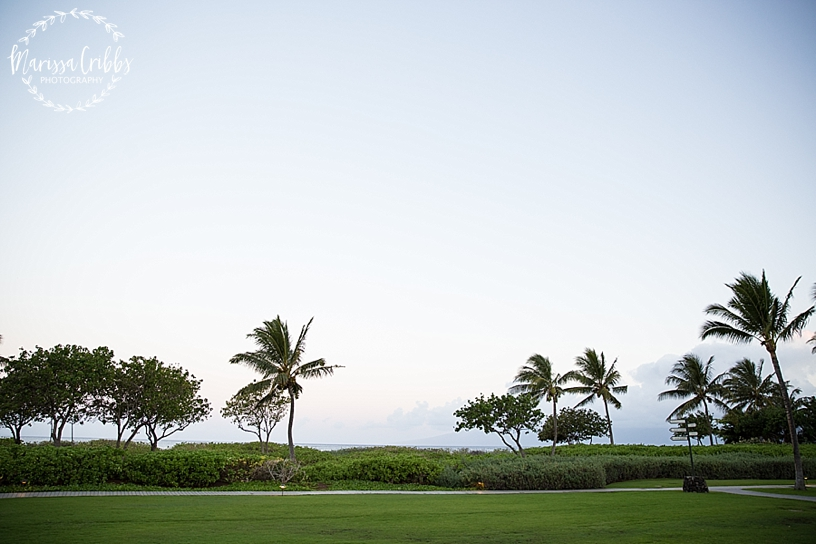 Hawaii Photography | Maui Photography | Destination | Marissa Cribbs Photography_3198.jpg