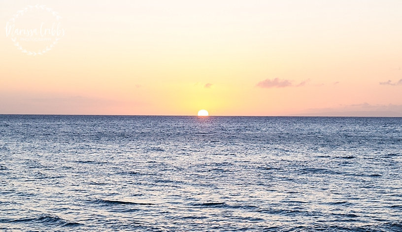 Hawaii Photography | Maui Photography | Destination | Marissa Cribbs Photography_3209.jpg