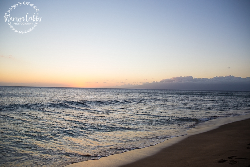 Hawaii Photography | Maui Photography | Destination | Marissa Cribbs Photography_3210.jpg