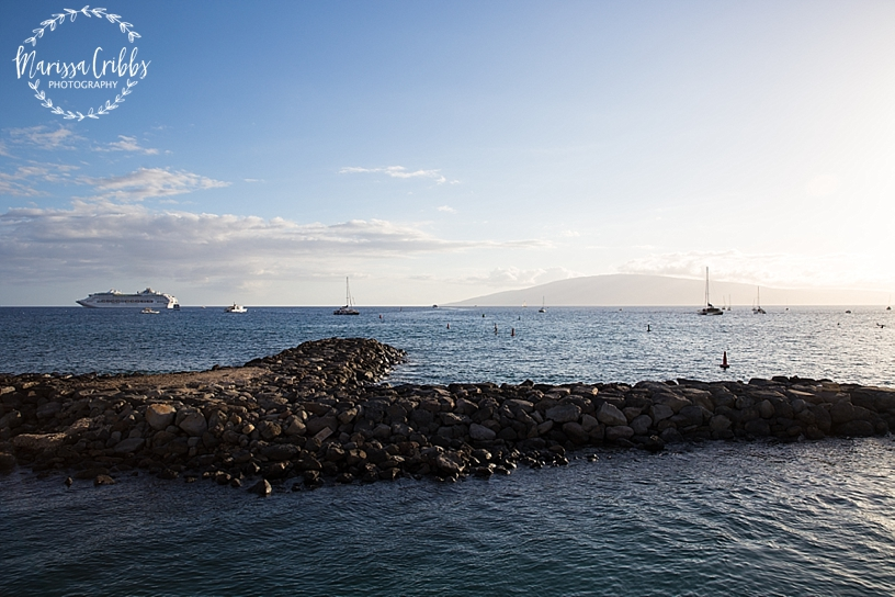 Hawaii Photography | Maui Photography | Destination | Marissa Cribbs Photography_3211.jpg