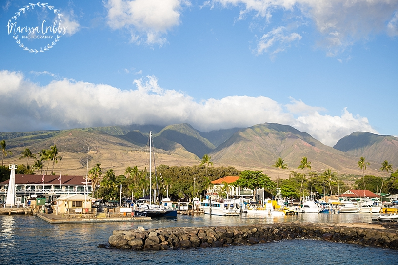 Hawaii Photography | Maui Photography | Destination | Marissa Cribbs Photography_3213.jpg