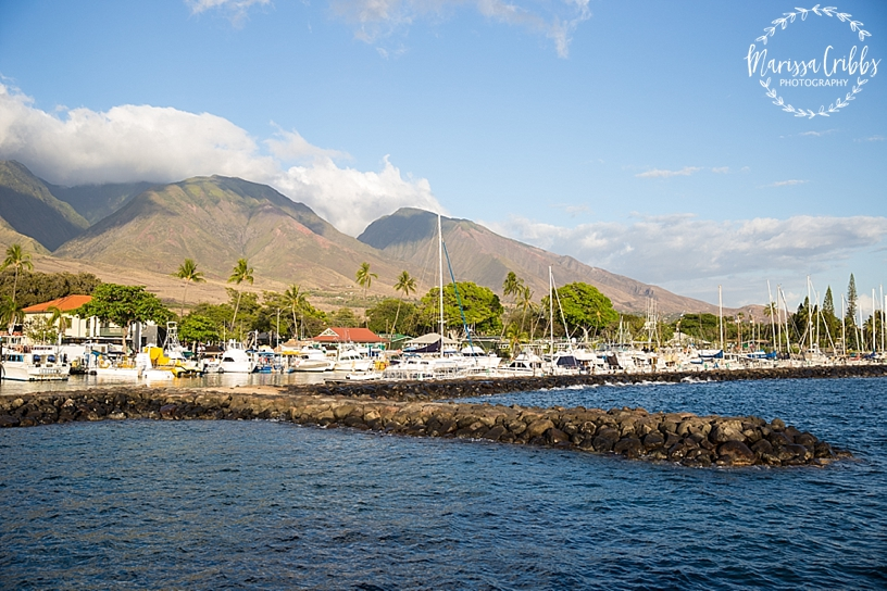 Hawaii Photography | Maui Photography | Destination | Marissa Cribbs Photography_3214.jpg