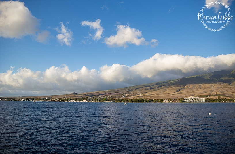 Hawaii Photography | Maui Photography | Destination | Marissa Cribbs Photography_3217.jpg