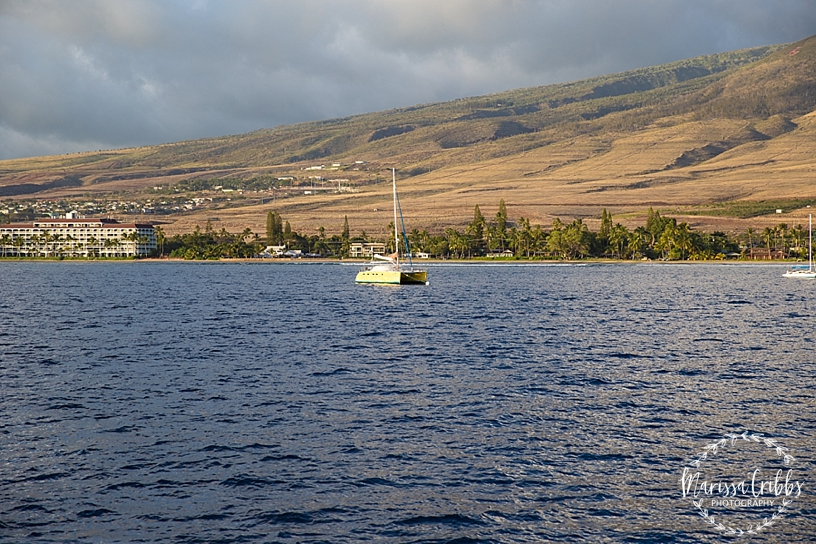 Hawaii Photography | Maui Photography | Destination | Marissa Cribbs Photography_3219.jpg
