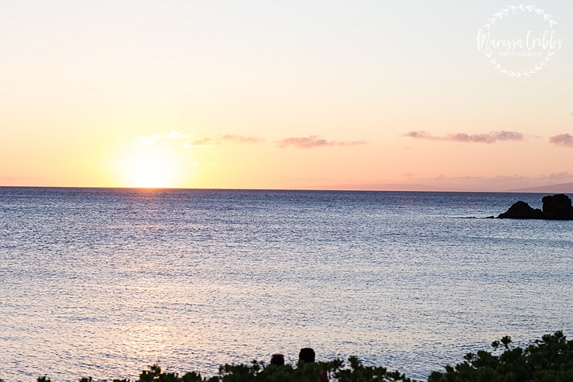 Hawaii Photography | Maui Photography | Destination | Marissa Cribbs Photography_3246.jpg