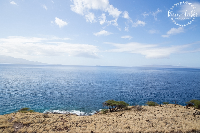 Hawaii Photography | Maui Photography | Destination | Marissa Cribbs Photography_3266.jpg