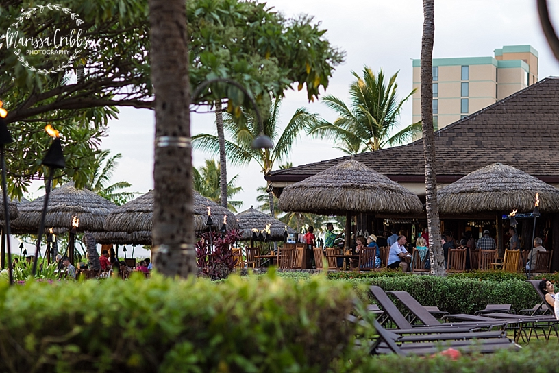 Hawaii Photography | Maui Photography | Destination | Marissa Cribbs Photography_3327.jpg
