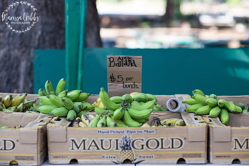 Hawaii Photography | Maui Photography | Destination | Marissa Cribbs Photography_3345.jpg