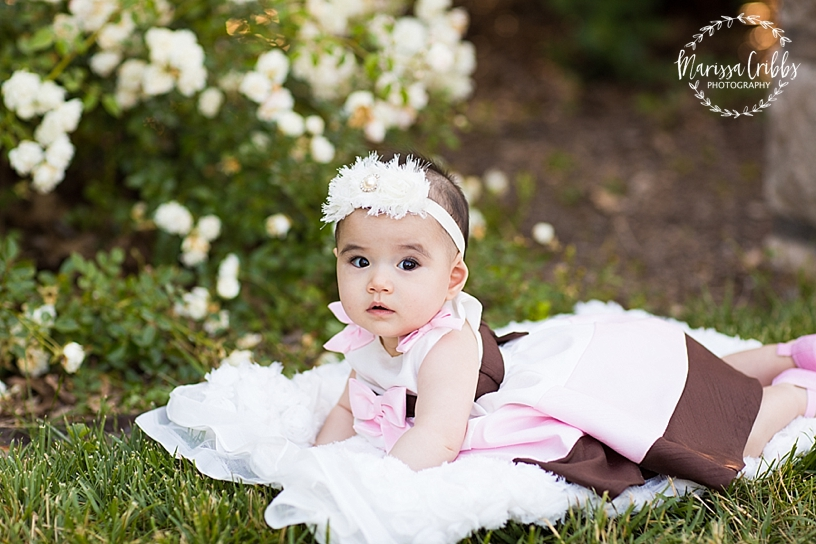 Briana 6 Months | Loose Park Baby Photography | Marissa Cribbs Photography_4120.jpg