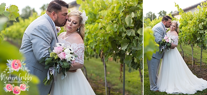 Jana & Nick | Stonehaus Farms Winery Wedding | Marissa Cribbs Photography | KC Wedding Photographer_4663.jpg