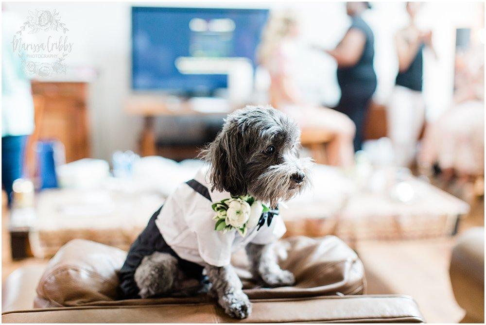 GORBY WEDDING | MARISSA CRIBBS PHOTOGRAPHY_4989.jpg